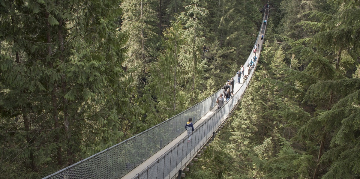 Capilano Suspension Bridge Park, Vancouver, Navidad,