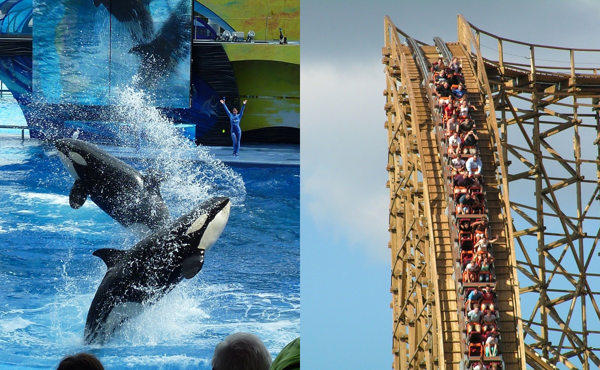 Reapertura en SeaWorld y Six Flags