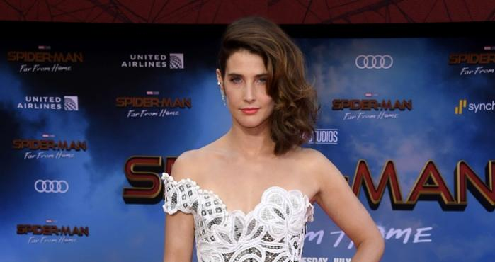 Cobie Smulders, Avengers, Spider-Man: Far From Home, How I Met Your Mother