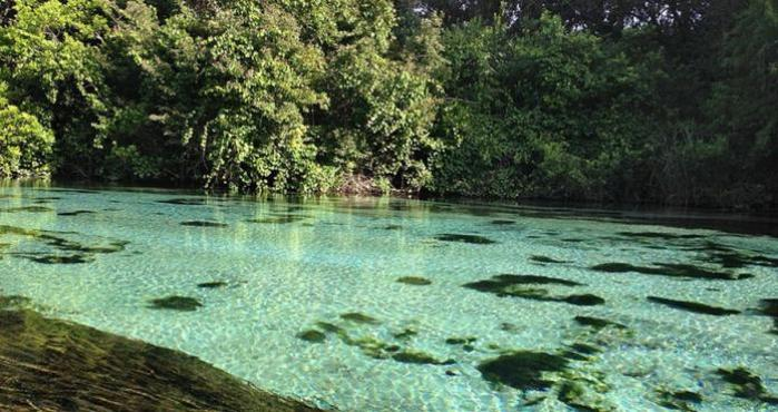 Weeki Wachee Springs, Florida,